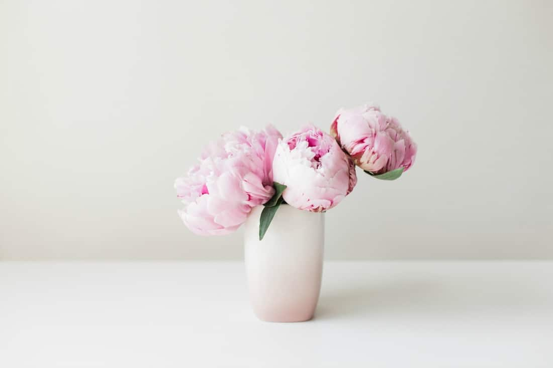 5 Peony-Inspired Mother's Day Gifts
