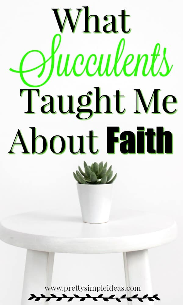 What Succulents Taught me About Faith