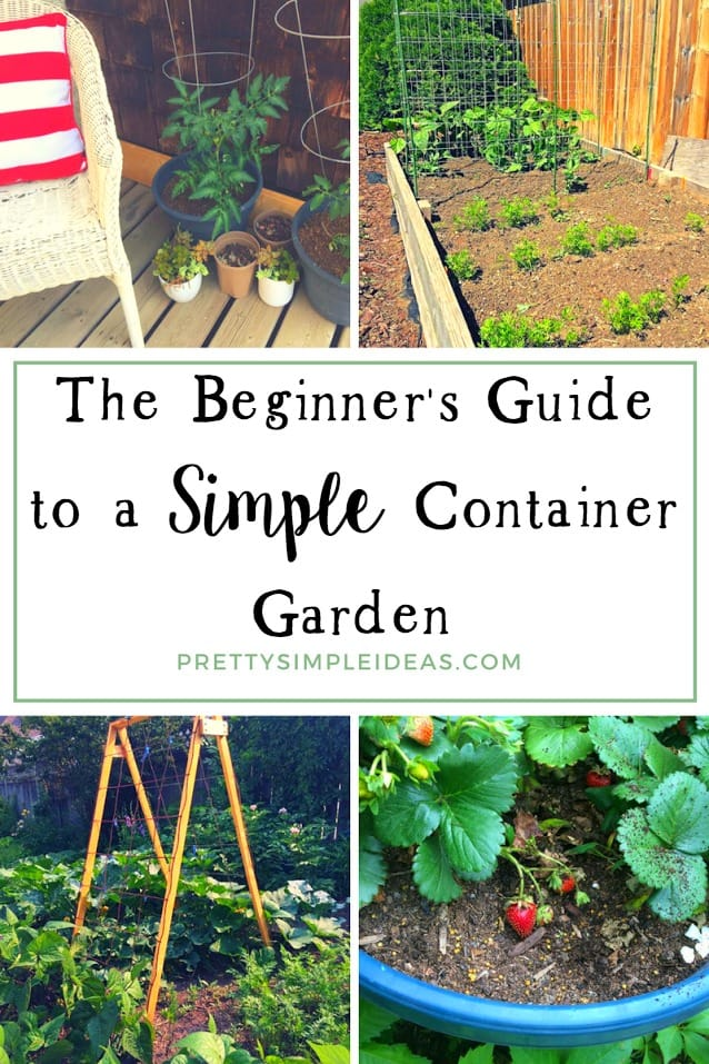 The Beginner's Guide to a Simple Container Garden