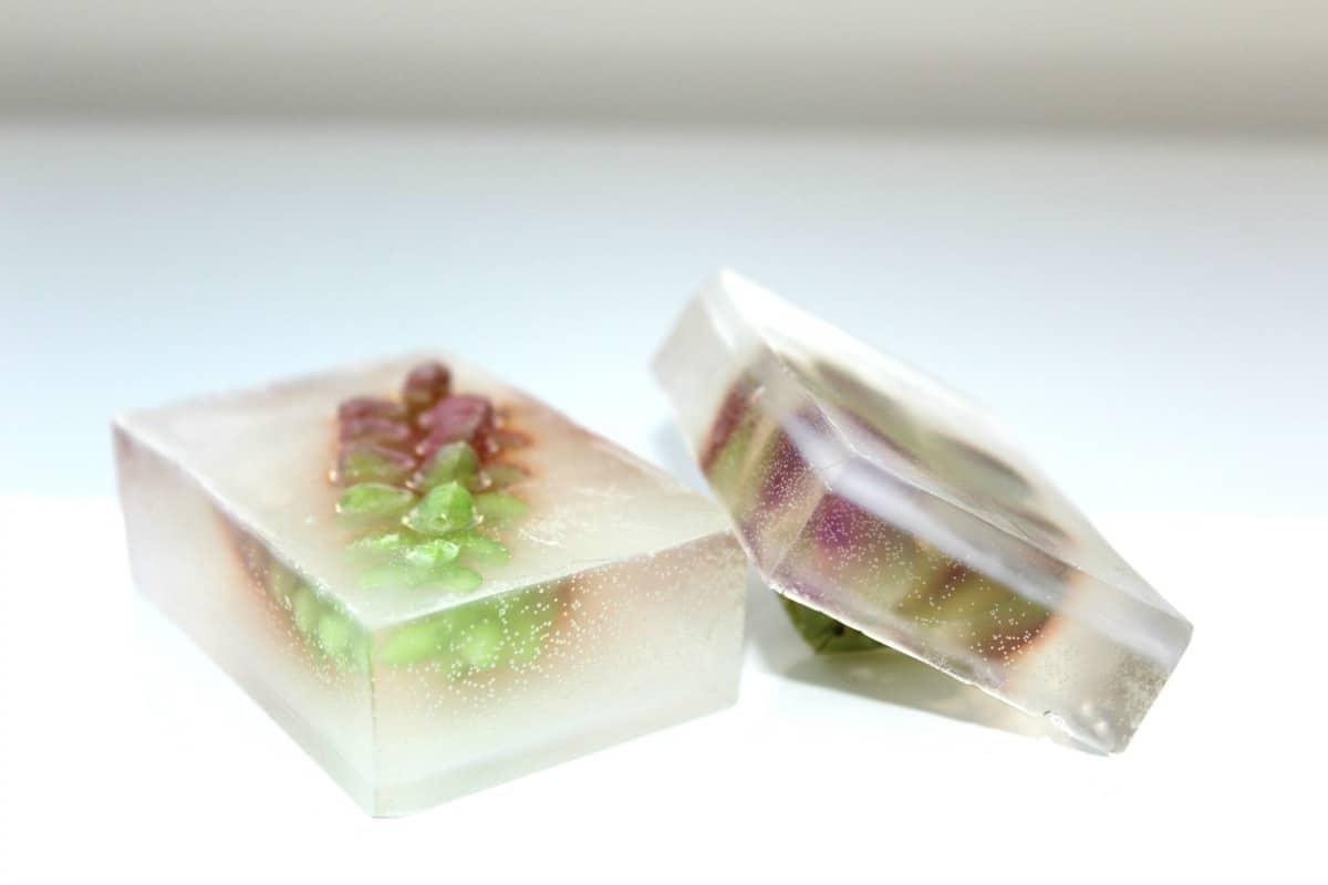 DIY Succulent Soap | Farmhouse Kitchen