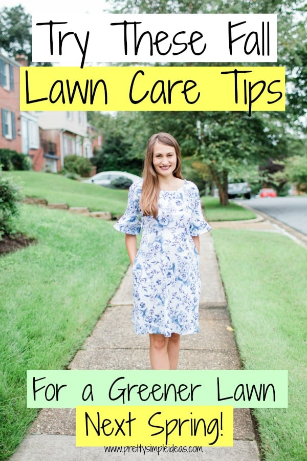 Fall Lawn Care Tips Lawn care hacks
