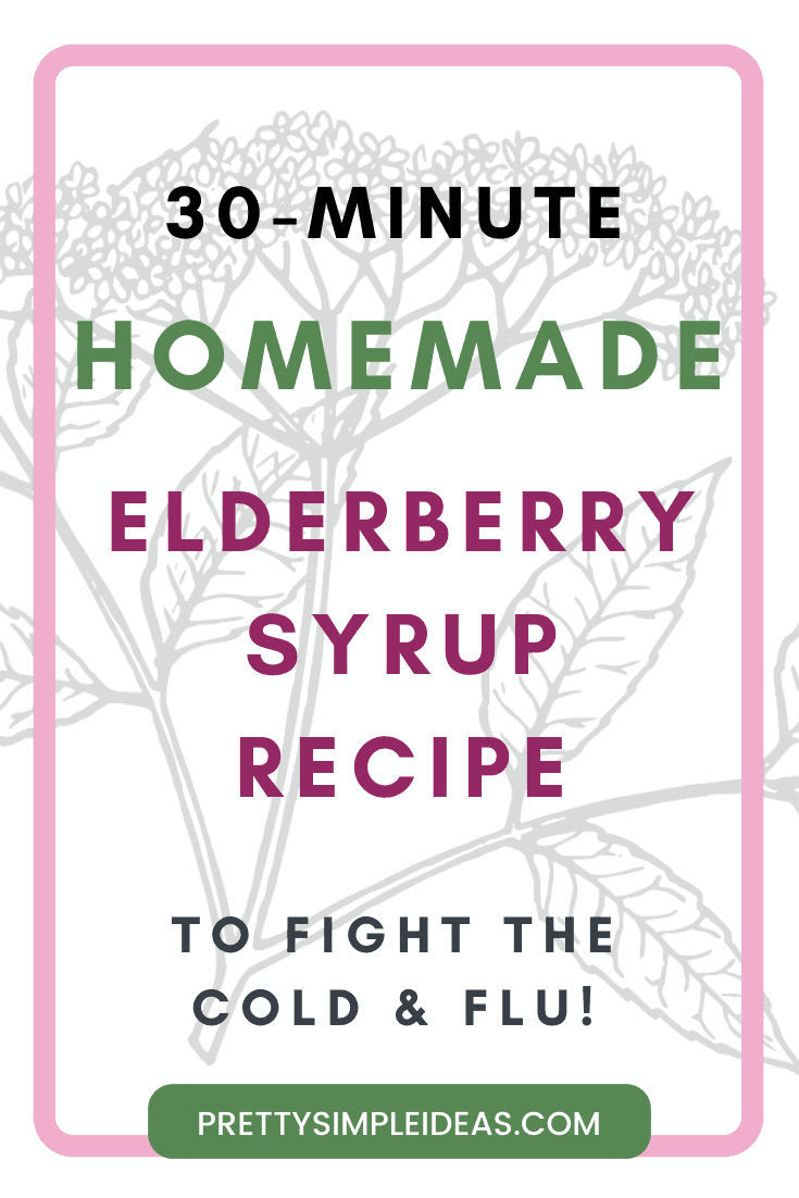 DIY Elderberry Syrup Recipe and Benefits