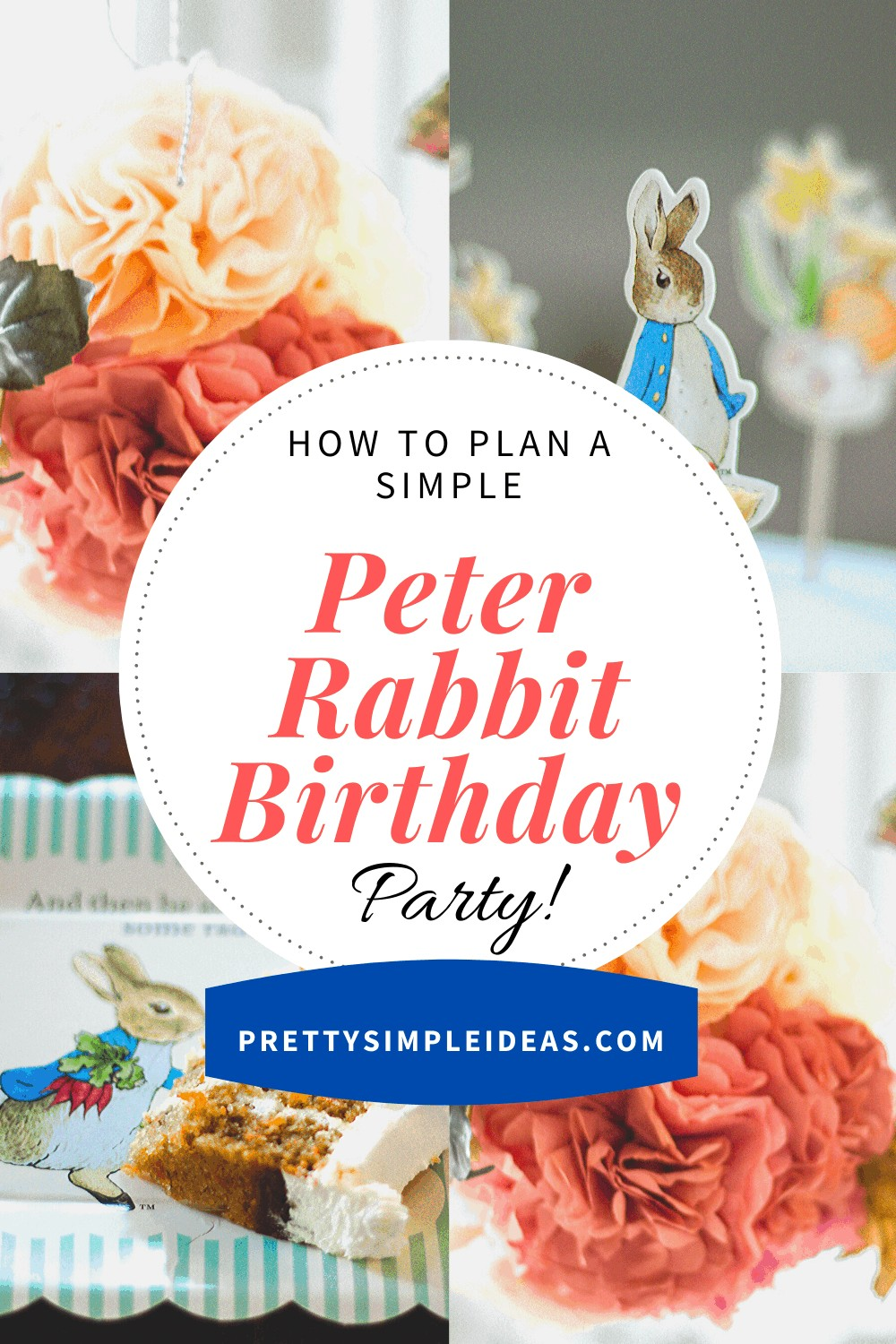 Simple Peter Rabbit Birthday Party Ideas